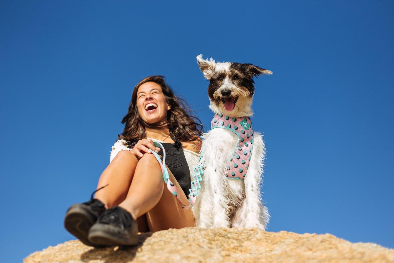 Monica Spohn fotógrafa de cachorro