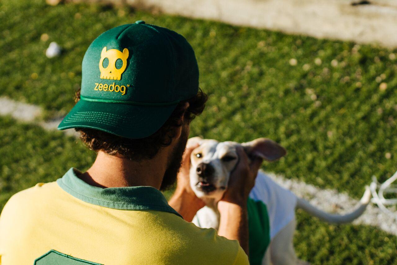 zeedog-bone-brasil