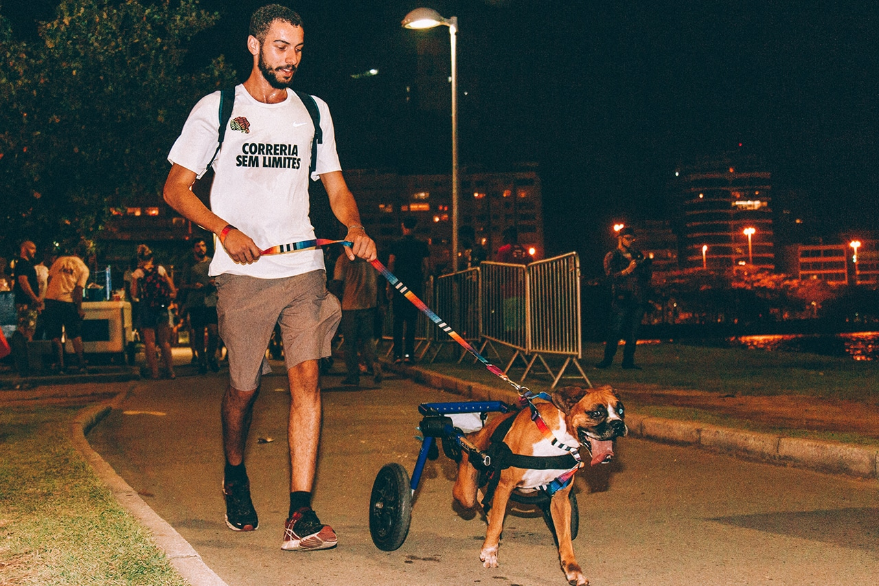 Corrida com cachorro - dog run