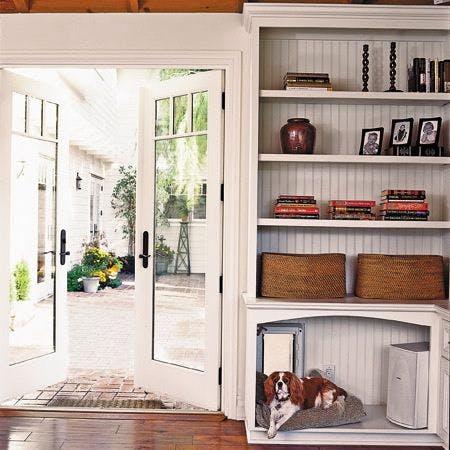 Espaço para cachorro em casa