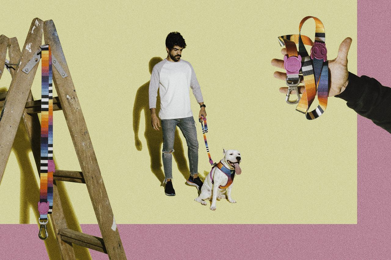 guia para cachorro prisma
