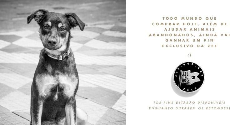 zee-dog-day-marco-na-historia-da-zee-dog