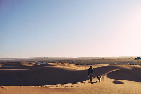coleção-Zee.Dog-Marrakesh_deserto